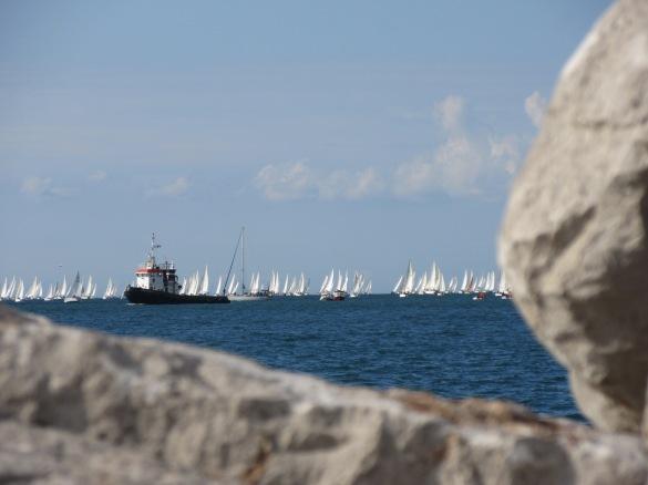 Vele nel golfo di Trieste